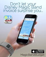 magic band budget
