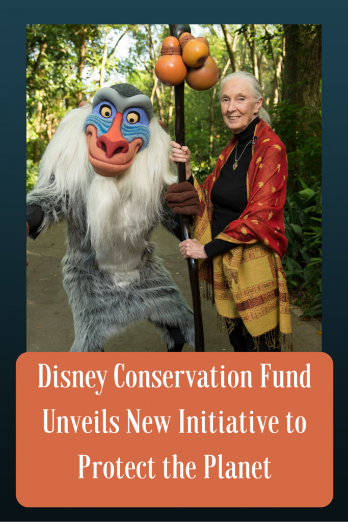 disney-conservation-fund-unveils-new-initiative-to-protect-the-planet-683x1024
